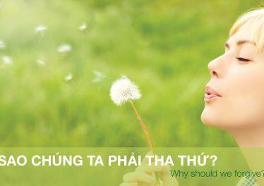 sao-chung-ta-phai-tha-thu-blog-innerspace